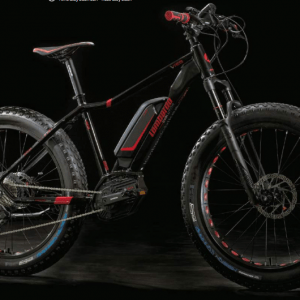 e-Ivrea Fat Front: Fat Bike Elettrica con forcella Rock Shox 100mm. Fat Bike Lombardo 2018 Bosch performance CX.