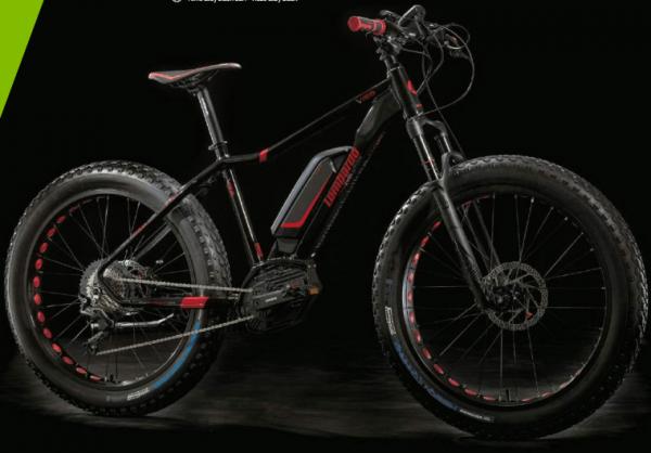 e-Ivrea Fat Front: Fat Bike Elettrica con forcella Rock Shox 100mm. Fat Bike Lombardo 2018 Bosch performance CX.