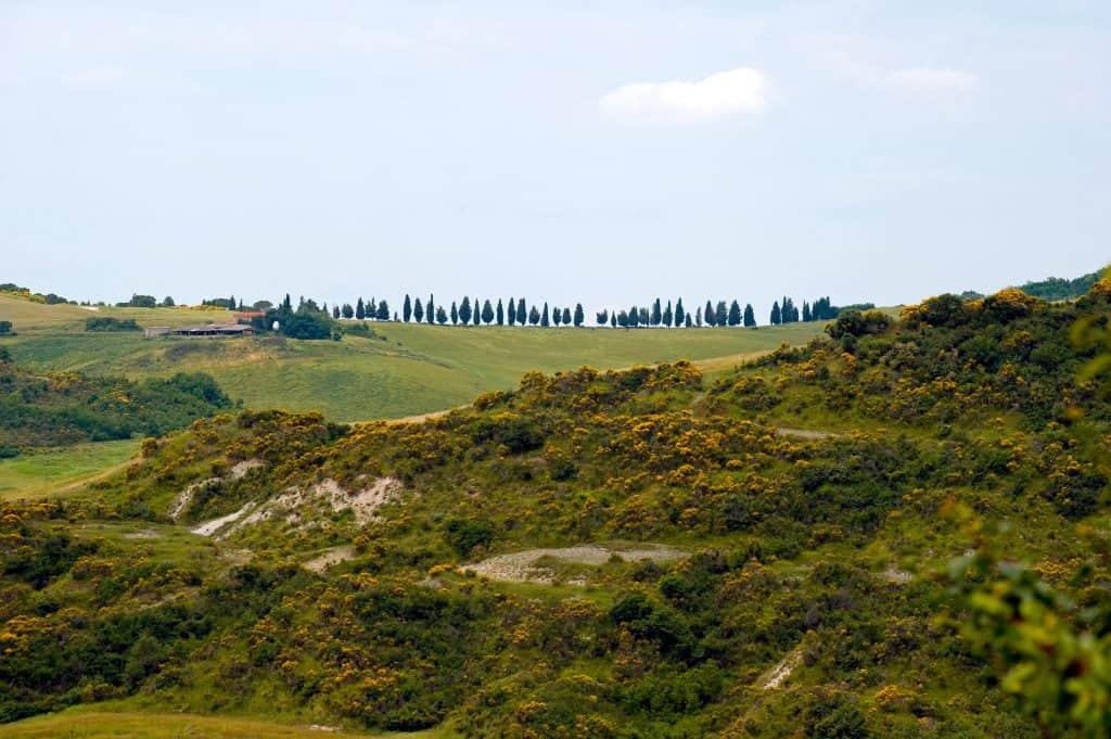 Bike Tour Toscana & Test Guidato: e-bike gratis in Toscana, Vista splendidi Panorami.