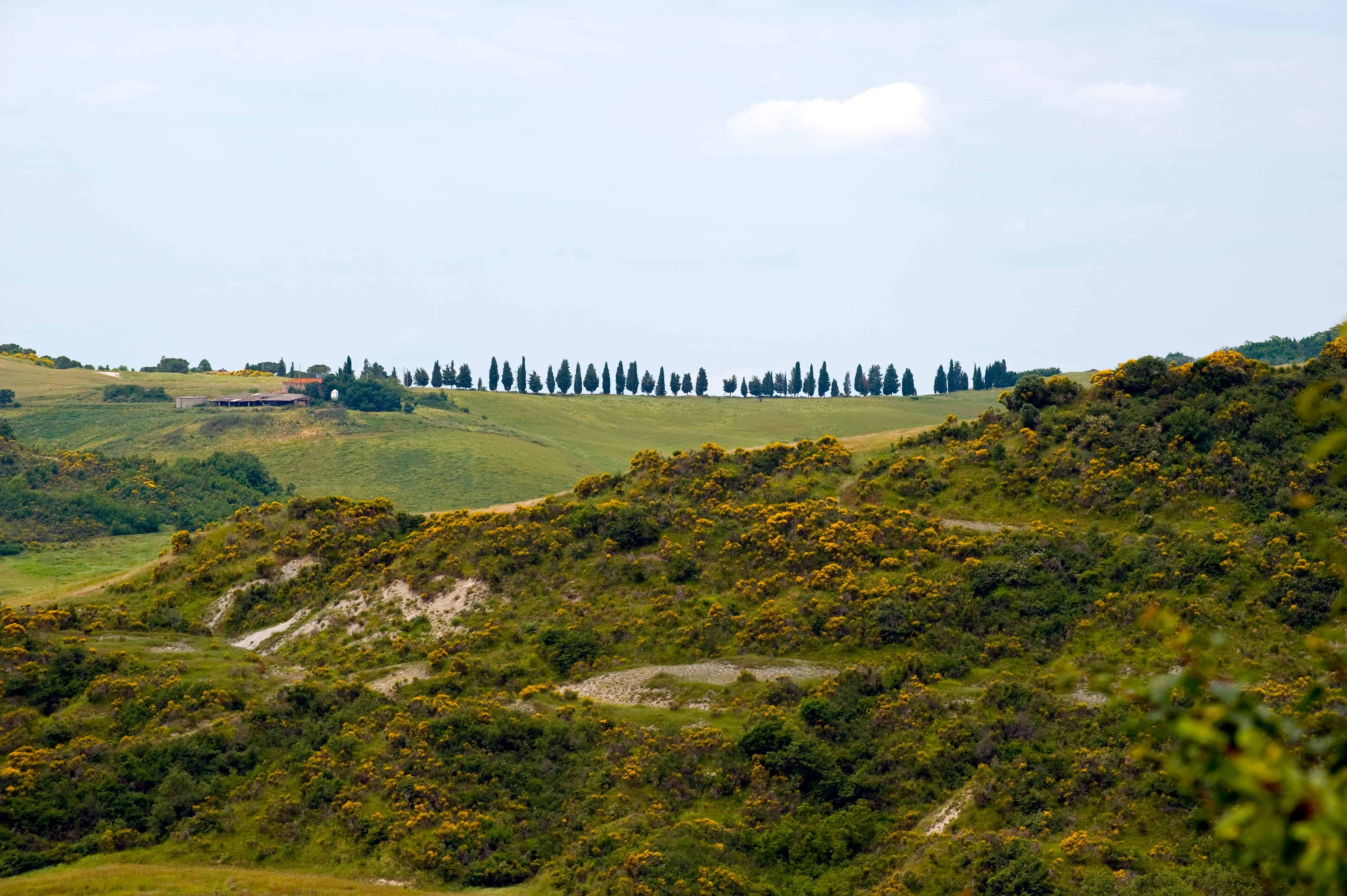 Bike Tour Toscana & Test Guidato: e-bike gratis in Toscana, Vista splendidi Panorami.