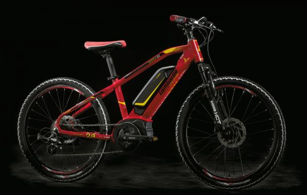 e-Garda Youth 2018: Bicicletta Elettrica Ragazzo Motore Bosch