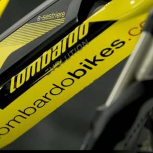 vista particolari eSestriere 6.0 Sport Front. Hard Tail eMTB della Lombardo e-Bikes.