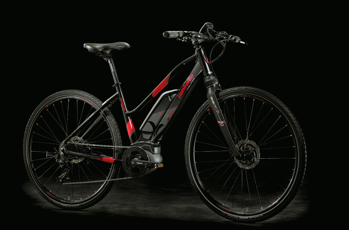 City bike: Bici Elettrica Donna moderna, ecologica e tiene in forma: e-Bike Donna e-Amantea 2018.